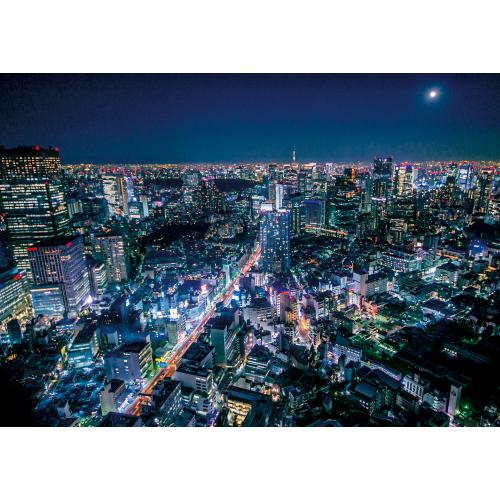 東京の夜とスカイツリー