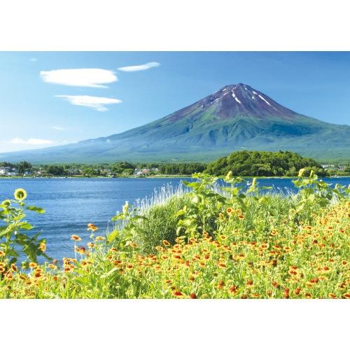 河口湖畔の花と富士山