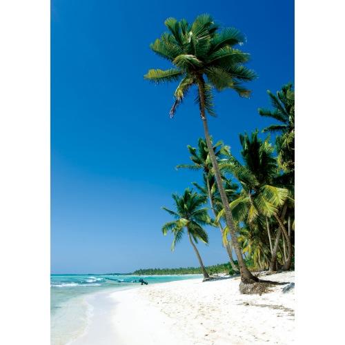 白砂のリゾート