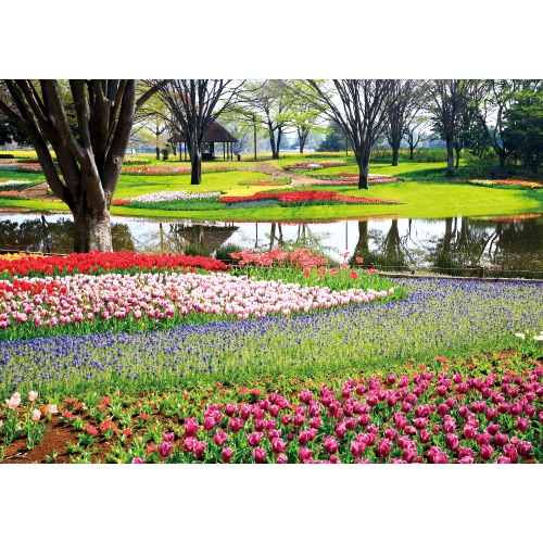 春の花と公園